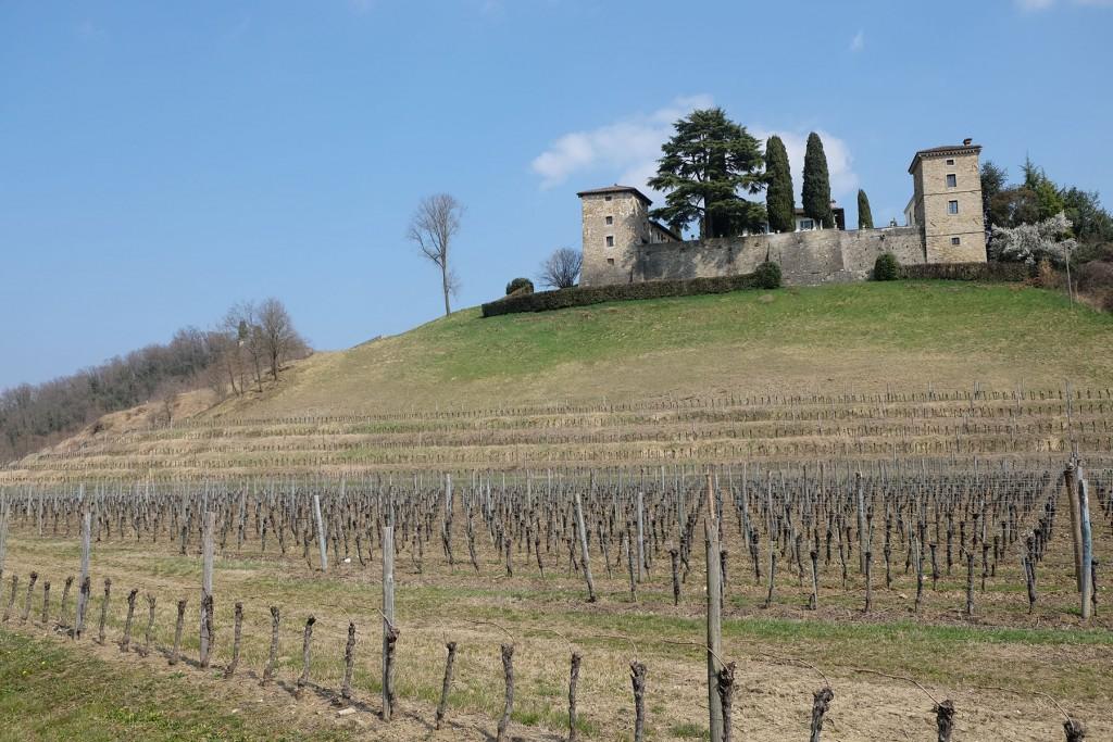 Friuli - Donna Wheeler
